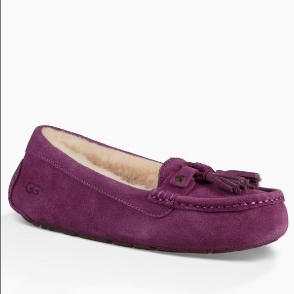 792cb82b5f8 UGG Shoes | Litney Moccasin In Purple Size 8 Euc | Poshmark